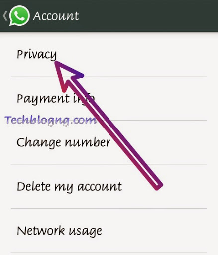 disable read messages blue ticks on whatsapp