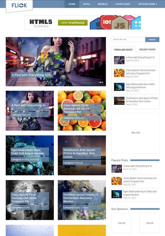 Flick Wordpress THeme - HiideeMedia