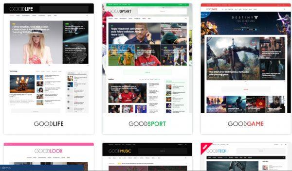 Goodlife Wordpress theme 600x352 1 - HiideeMedia