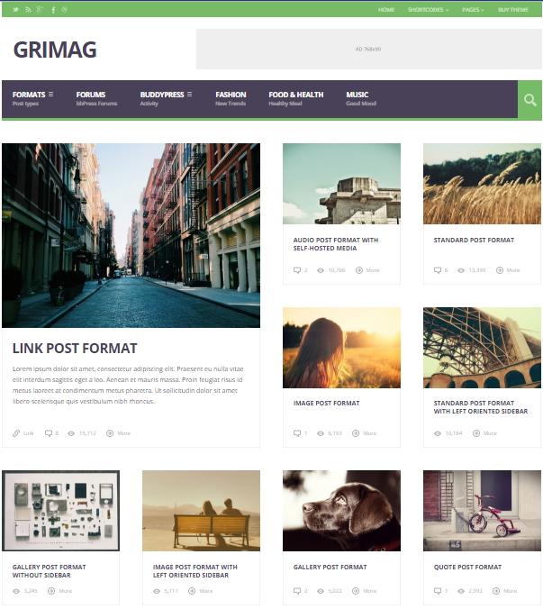 grimag wordpress theme - HiideeMedia