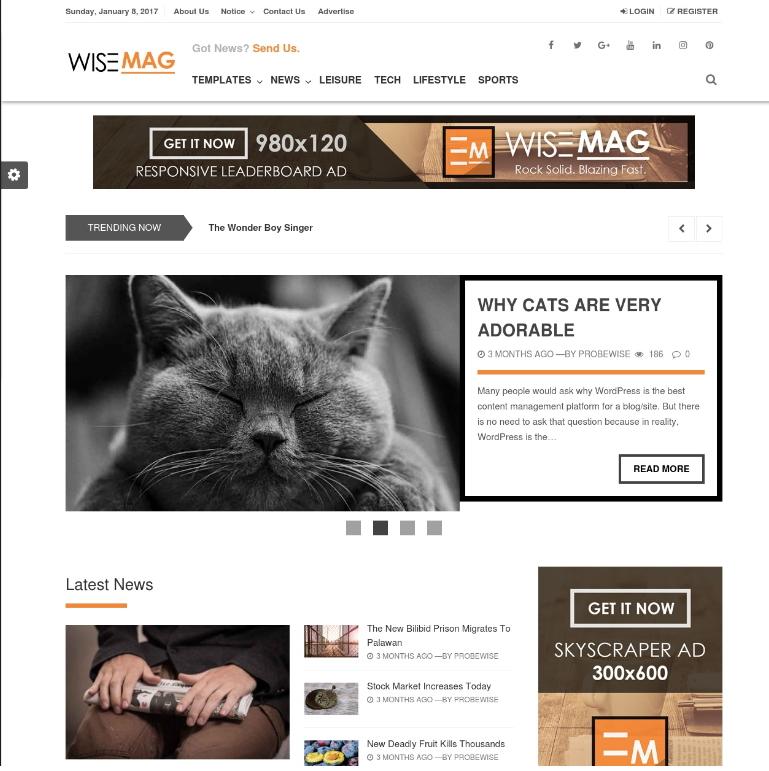 wisemag wordpress theme - HiideeMedia