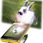 flexibility of future smartphones - HiideeMedia