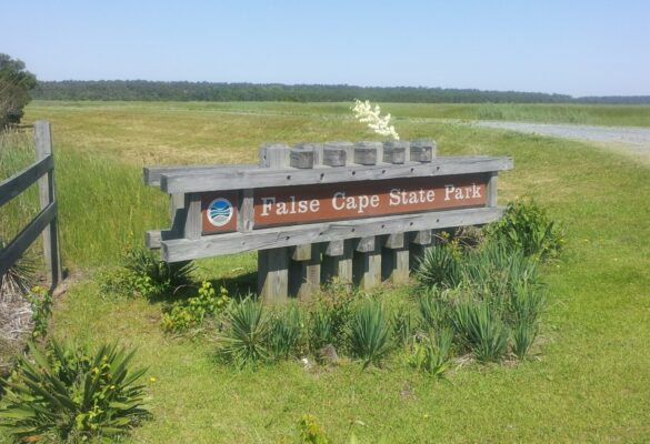 Ride on the Terra Gator at False Cape State Park