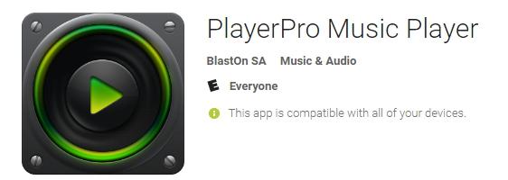 player pro music player