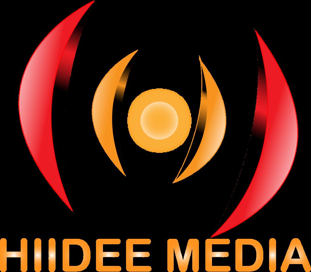 3d logo 1 - HiideeMedia